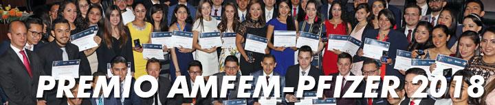 http://amfem.edu.mx/index.php/memorias-2018/151-premio-amfem-pfizer-2018
